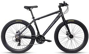 best hybrid cycle