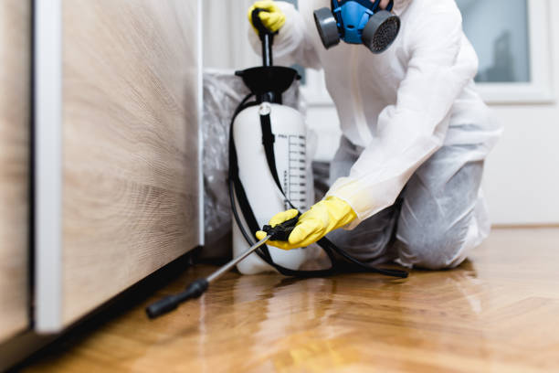 Pest Control Services - Concepts to comprehend