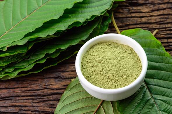 kratom for anxiety on the web